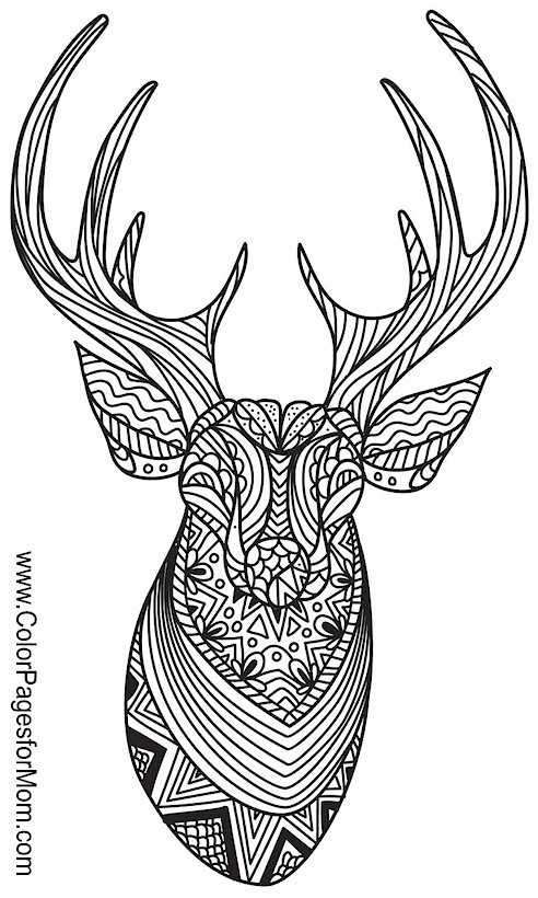 Animals 112 Advanced Coloring Page
