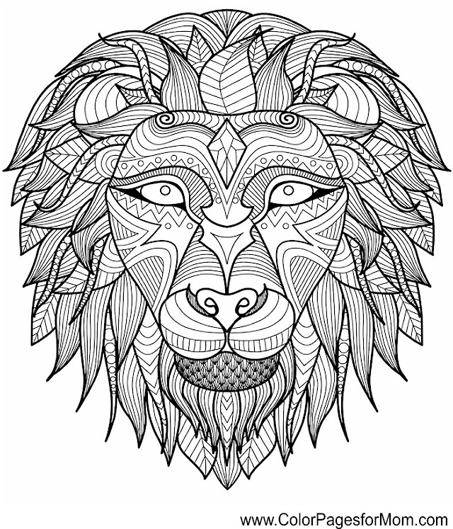 Galerry animal coloring picture