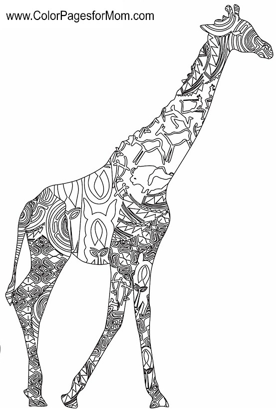 Advanced Coloring Pages Of Animals : Advanced animal coloring pages