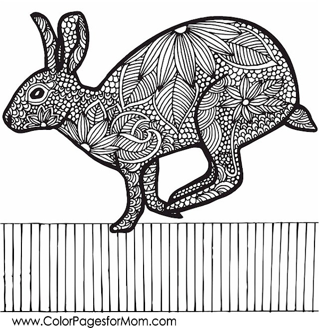 Galerry animal coloring pages for adults