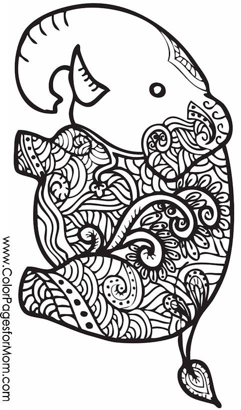 Animals 26 advanced coloring pages for Advanced animal coloring pages