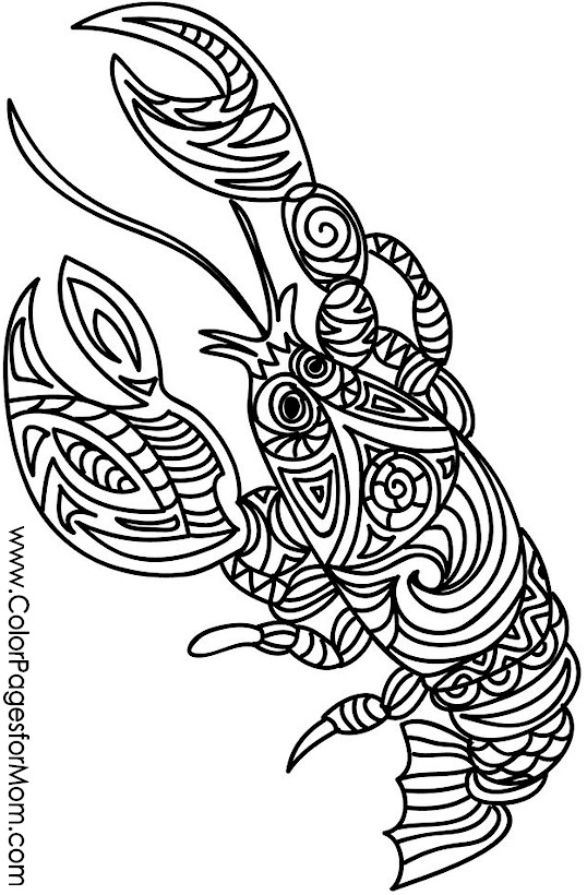 Animals Advanced Coloring Pages