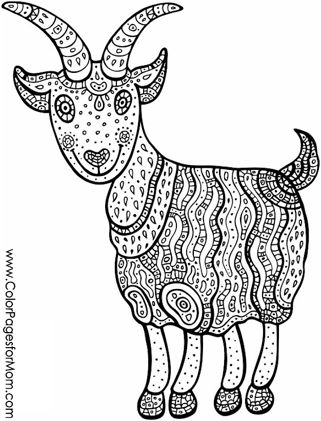 Animals4pf on Antelope Coloring Pages