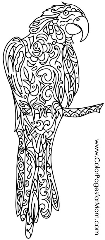 animal coloring page 59