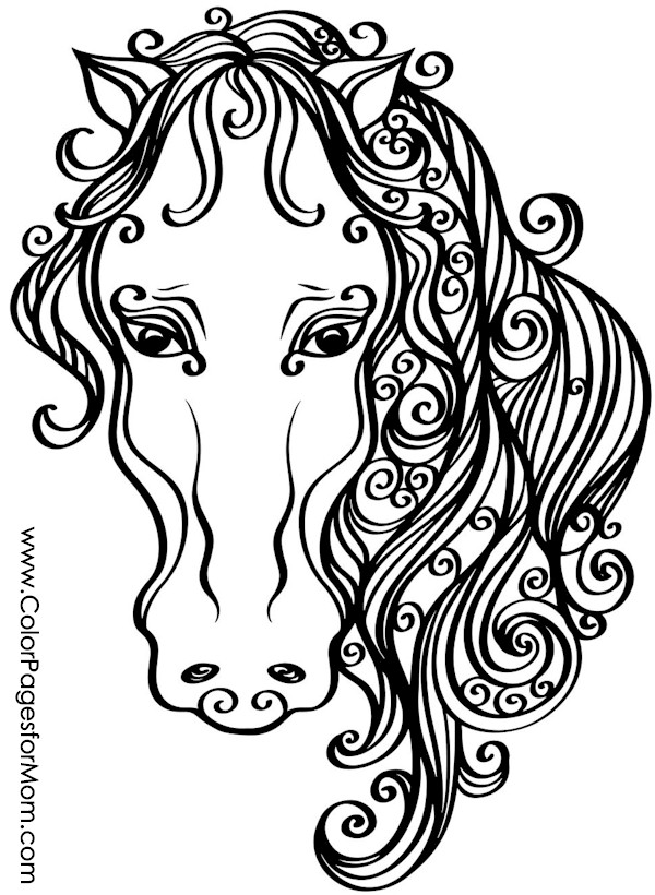 animal coloring page 61