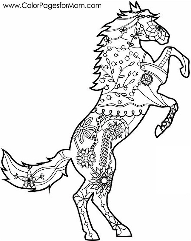 Advanced coloring pages animals for Advanced animal coloring pages