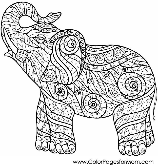 - Animals 80 Advanced Coloring Pages