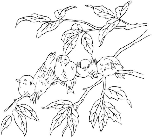 Printable Coloring Pages For Dementia : Bird Coloring Page