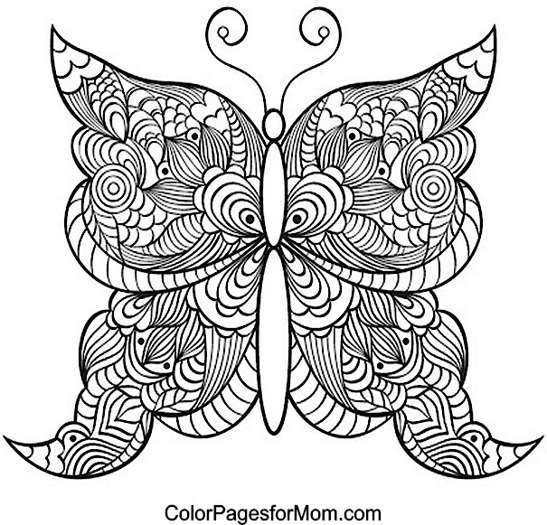 Butterfly coloring page 21 for Coloring pages of butterflies for adults