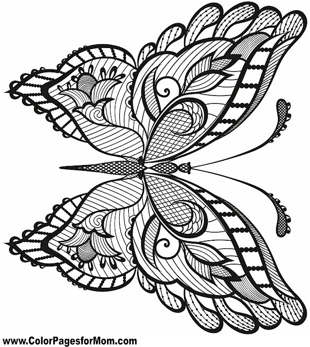 coloring pages detailed butterfly - photo#26