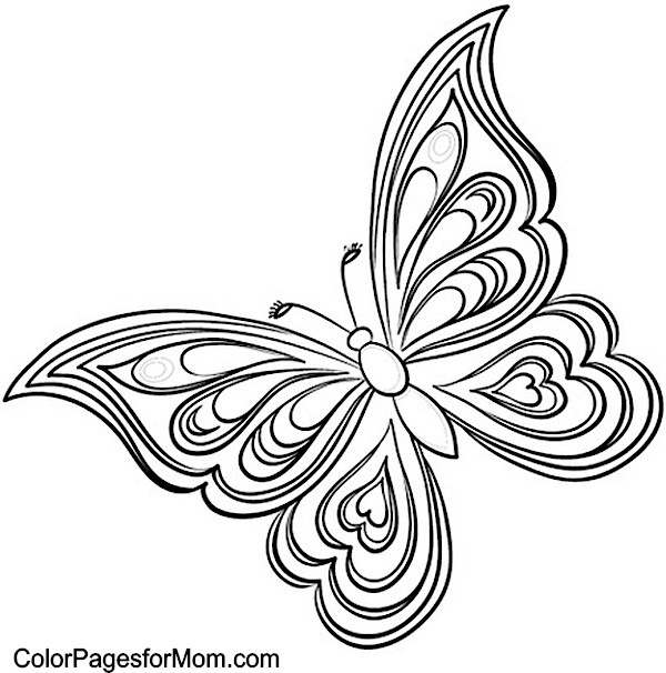 free coloring pages of paisley butterfly