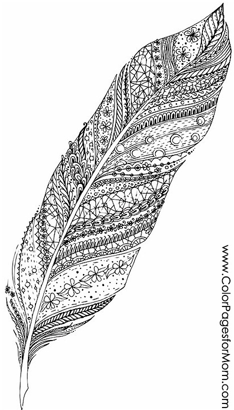 Advanced Coloring Pages Feathers 12