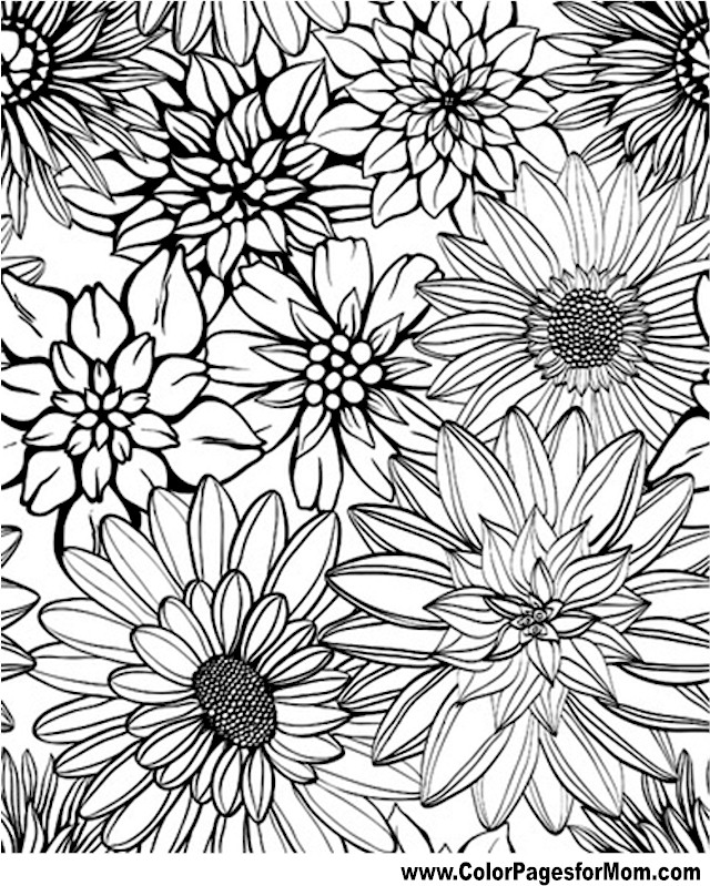 Advanced coloring pages flower coloring page 79 for Flower adult coloring pages