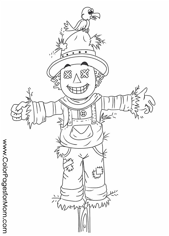 Scarecrow Coloring Pages Pictures furthermore Scarecrow coloring pages 7 additionally yco48yoKi furthermore Printable fall coloring page 2 moreover Fall Scarecrow Coloring Page additionally  likewise 079afc78e1f44f4784a104eb2f173f55 furthermore scarecrow coloring page together with 6TyXzd6Tn additionally 8d19f99ca462b729c8b187a55b5264ce furthermore halloween33. on scarecrow coloring pages for adults large print