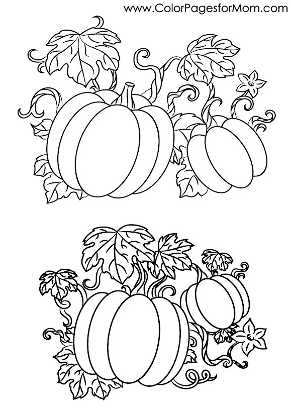 Halloween Coloring Pages Advanced : Advanced coloring pages halloween pumpkins page