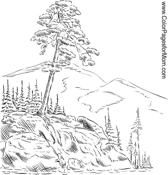 Free Printable Coloring Pages For Adults Landscapes : Landscape coloring page