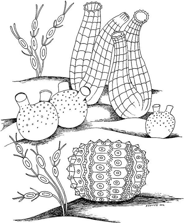 pussy coloring pages - nude coloring pages for adults only hardcore pussy