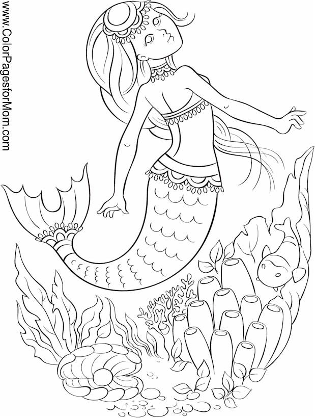 ocean seascape coloring pages - photo #18