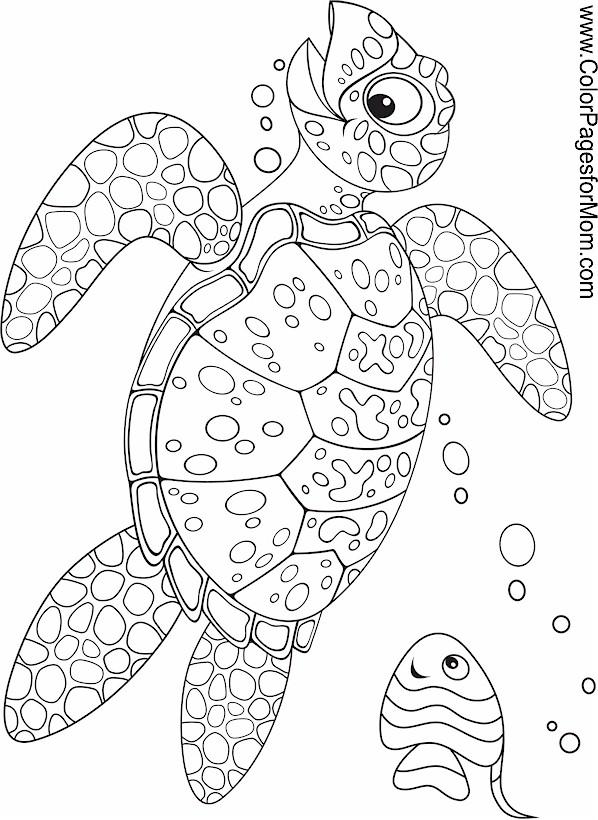 Seascape Ocean Coloring Page 34