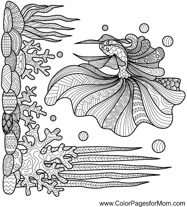 ocean seascape coloring pages - photo #23