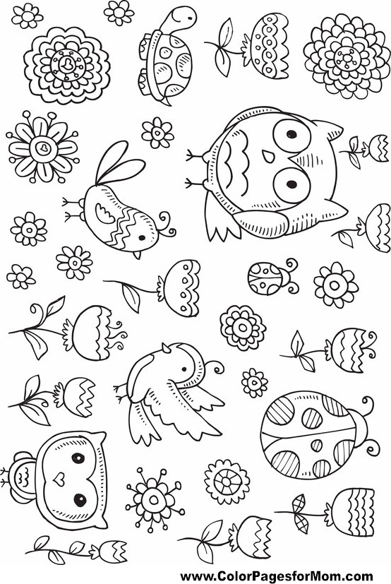 free owl coloring pages for adults - owl coloring page 11