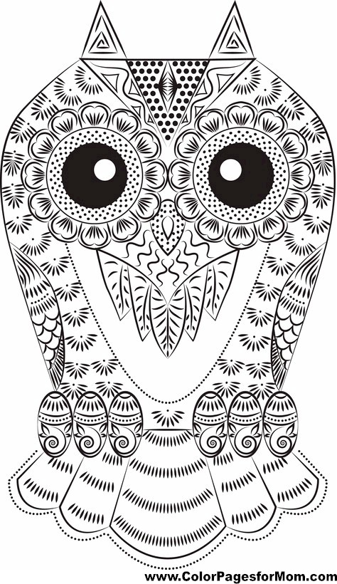 stress relieving coloring pages owls - photo#37