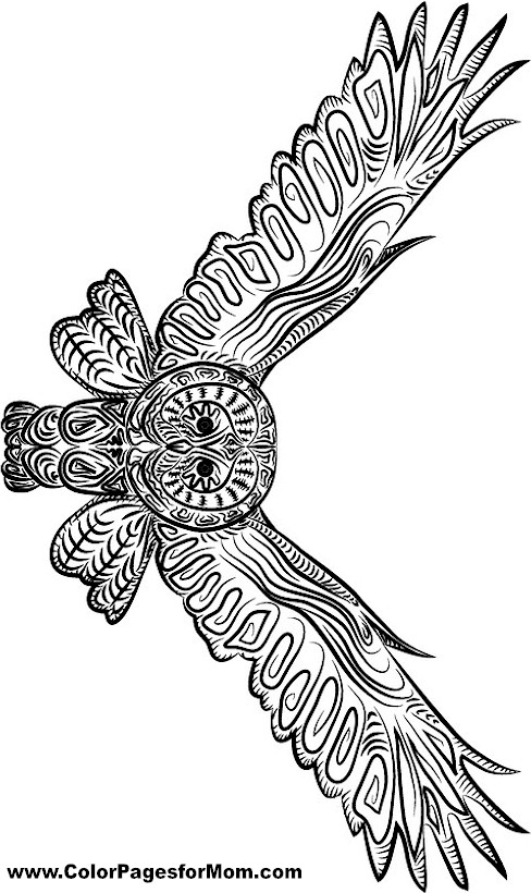 owl coloring page 25 - Free Printable Owl Coloring Pages