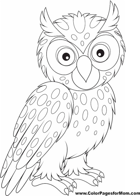 Free Coloring Pages Of Owls Adults Coloring Pages Of Owls For Adults