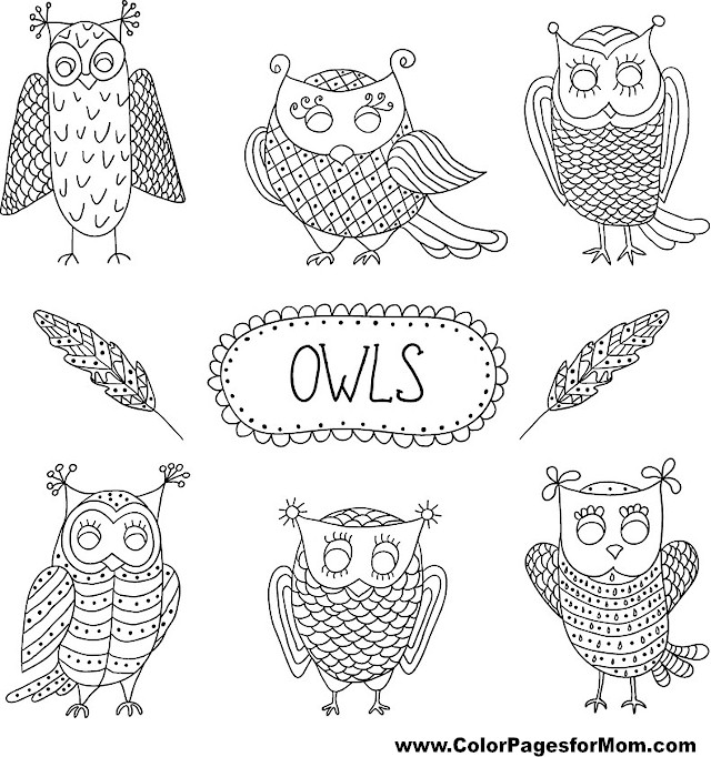 Owl Coloring Page 8