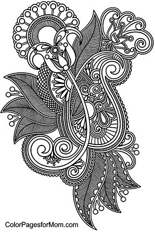 Punchy image throughout printable adult coloring pages paisley
