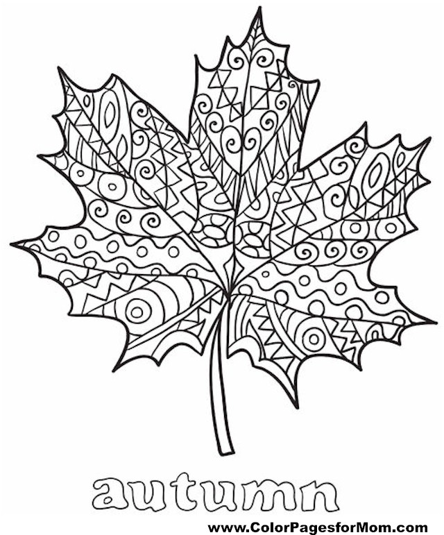 leaf coloring pages for adults - photo#12