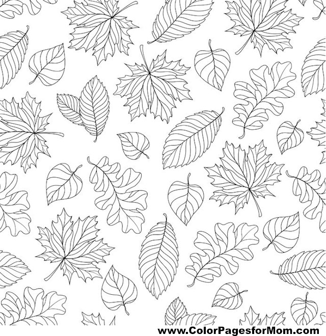 leaf coloring pages for adults - photo#34