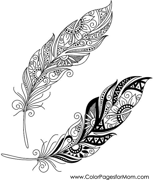 Coloring Pages For Adults - Feathers
