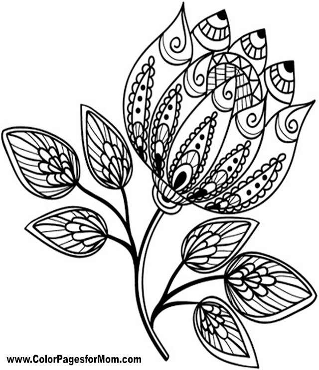 Advanced Coloring Pages - Flower Coloring Page 76